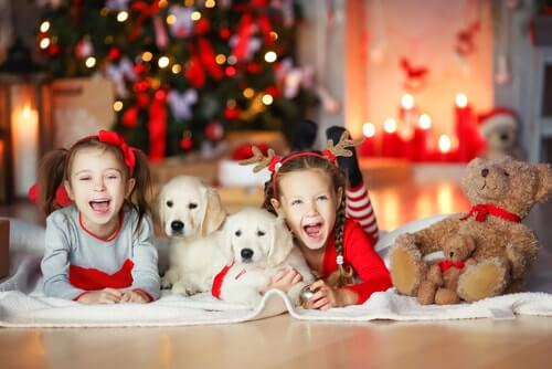 Meninas brincando com cachorros perto da árvore de natal